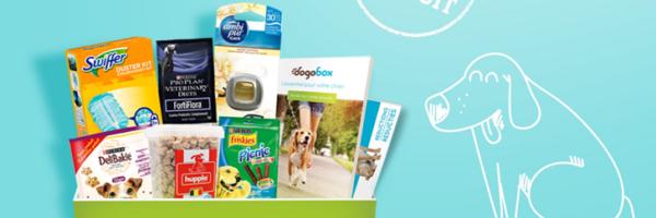 Box gratuite avec plein de cadeaux pour votre chien