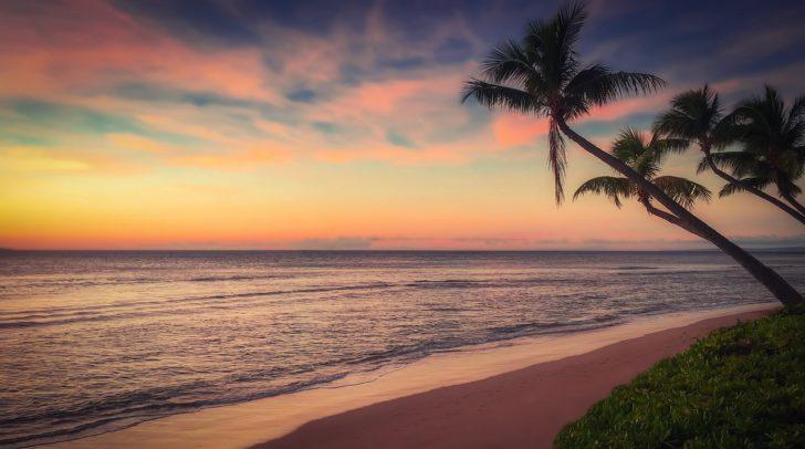 Vacances gratuites pour la 2ème personne avec TUI