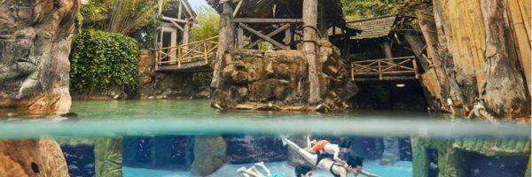 Vacances Center Parcs : réductions et annulation gratuite